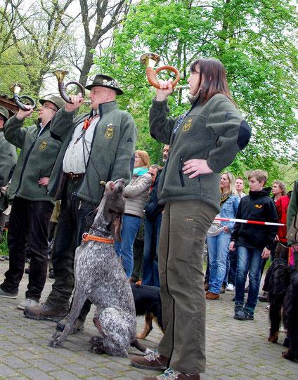 Mehrere Jäger blasen den Hunderuf auf ihren Jagdhörnern, ein Hund jault dazu.