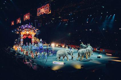 Der Zirkusbesuch