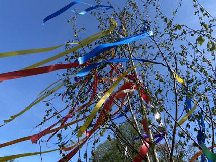 Baum mit Bändern Foto: Ulrich Melzer
