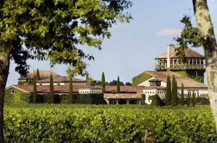 Bordeaux top things to do - Bordeaux wine country -  Copyright Deepix