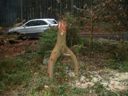 Der Holzmichel