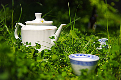 TEA IN THE PARK by congloria