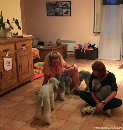 Estelle et Marie avec les chiots
