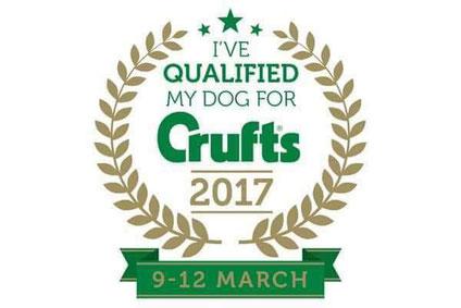 Cliquez sur l'image pour accéder à la rubrique CRUFTS 2017
