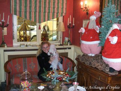 Cliquez sur le lien en attendant Noël