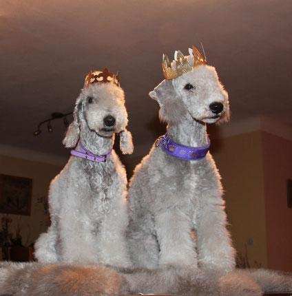 Le prince Joy et sa soeur princesse Estelle.