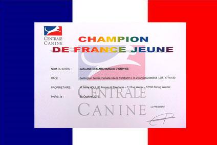 Jaslane DES ARCHANGES D'ORPHÉE, Championne de France Jeune.