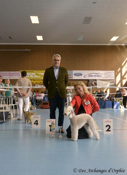 Tsarine meilleure Champion et BOB / meilleure de race. Juge: M. Peter Lauber (Suisse)
