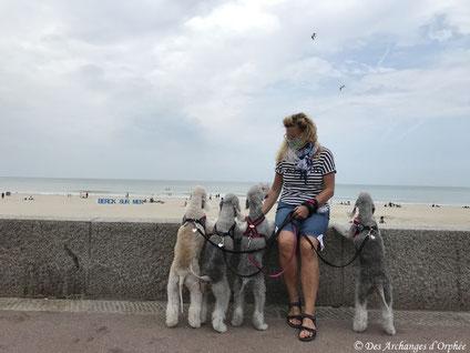 Tsarine, Olga, R'mione et Jaslane à Berck-sur-Mer