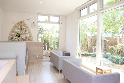 大きな窓からの緑 佐賀 アサヒ薬局 ホームページ