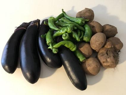 朝採れ野菜を食べよう!