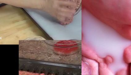 milk.scar.fleisch (2015), still from video with sound, looped