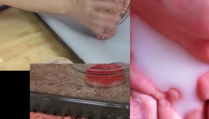 milk.scar.fleisch (2015), still from video with sound, looped