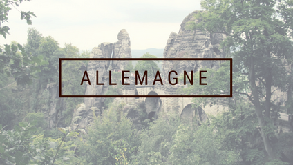 VOYAGE ALLEMAGNE CAMION