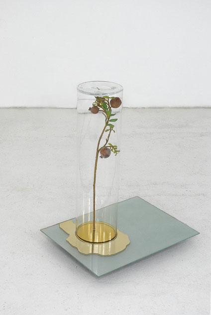 Goldene Pfütze - Masami Hirohata