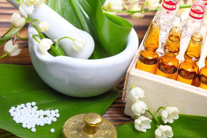 Anima-Balance | Tiertherapie | TCM | Bachblüten | Ceres | Gemmotherapie | Homöopathie | Schüssler Salz | Phytotherapie | Mykotherapie |