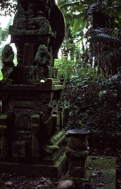Pura Gunung Batukaru, Bali. Nikon F4. Foto: bonnescape 1993