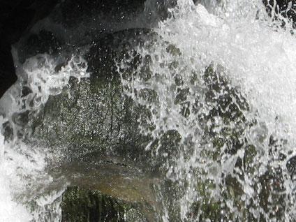7a passeggiata - Gocce d'acqua - foto di Umberto Barbera