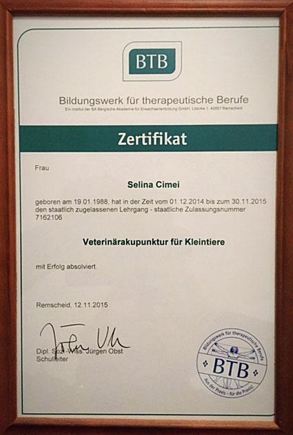 Zertifikat tierheilpraktikerin - Tierheilpraxis Dreiländereck