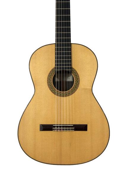 Don Pilarz - classical guitar
