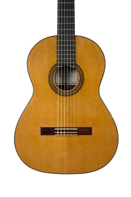 Vladimir Druzhinin - classical guitar
