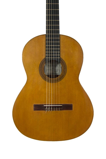 Pablo Rodriguez - classical guitar