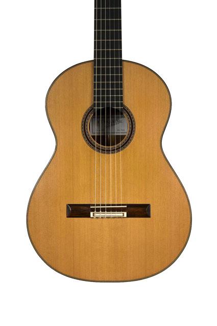 FJ Riquelme - classical guitar