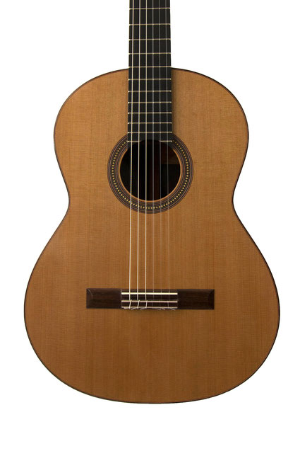 Francois R Leonard - classical guitar