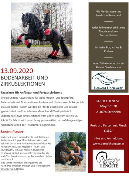Ausschreibung Tageskurs Bodenarbeit und Zirkuslektionen 13.09.2020