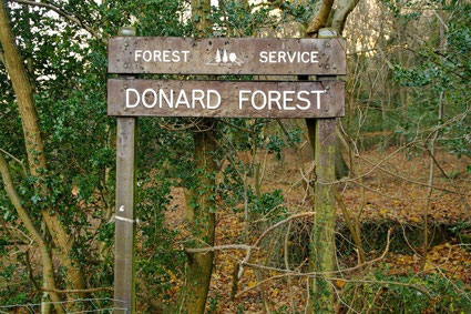 ドナード山への代表的な登山口の一つ「Donard Forest(ドナードの森)」の入り口。