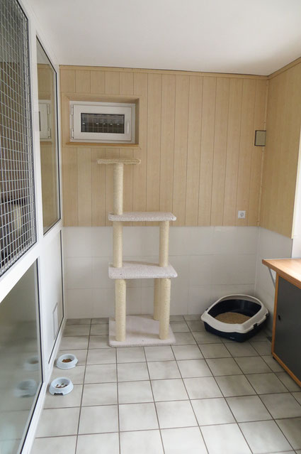 Dieses Apartment eignet sich für bis zu 3 Katzen, die aus einem Haushalt stammen.