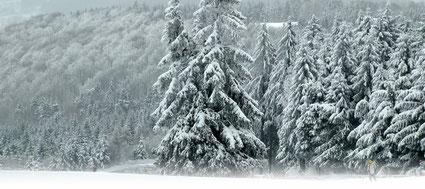© Welt der Synoptik | Winter auf der Wasserkuppe.