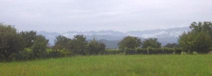 Blick vom Hof der Brennerei Tasolini