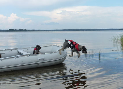 Alf and Harley, lake Seliger, July 2014