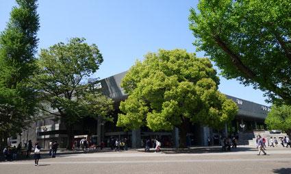 東京文化会館(設計:前川国男)