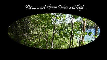 Wie man mit kleinen Federn weit fliegt - das Video über die Kiowa Little Feather northern Lights Flutes