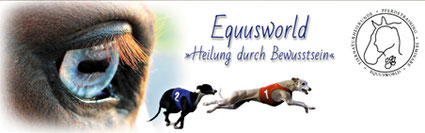http://www.equusworld.de/
