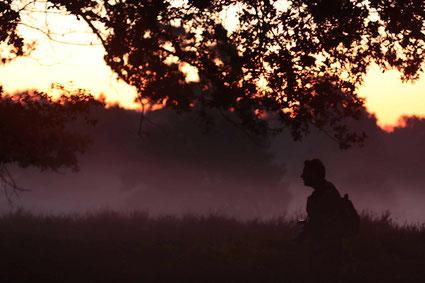 Den Geheimnissen der Natur auf der Spur: Exkursionsbeginn vor Sonnenaufgang im Spätsommer.