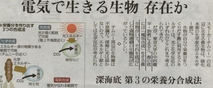 2012/2/12読売新聞サイエンス 腸内細菌は電気を合成している?