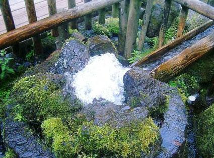 北海道羊蹄山の名水