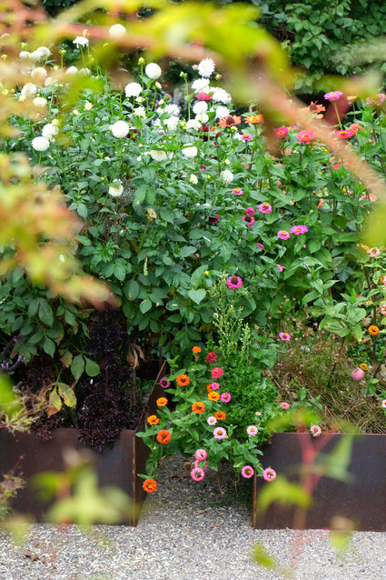 dieartigeGARTEN // August Garden - high beds with zinnia / Details: Hochbeete mit Zinnien+Dahlien