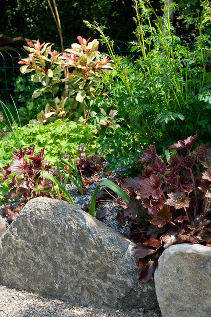 dieartigeGARTEN // Mai Frühlingsgarten - Japanischer Bauerngarten - Natursteinkante ,it Purpur-Glöckchen, Wiesenknopf, Allium, Storchenschnabel + Glanzmispel