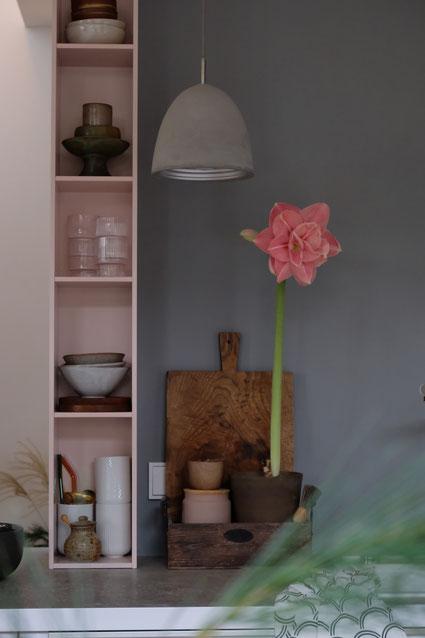 dieartigeBLOG // Küche Alno, Duravit Regal, Wandfarbe Grau, Amaryllis in Rosa