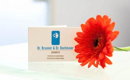 Dr. Max Mustermann, Zahnarzt in Musterstadt: Zahnerhaltung und Prophylaxe