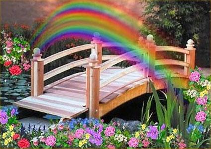 ...die Regenbogenbrücke....