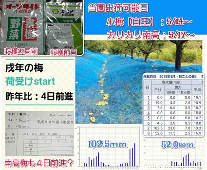 2018当園収穫出荷可能日 和×夢 nagomu farm