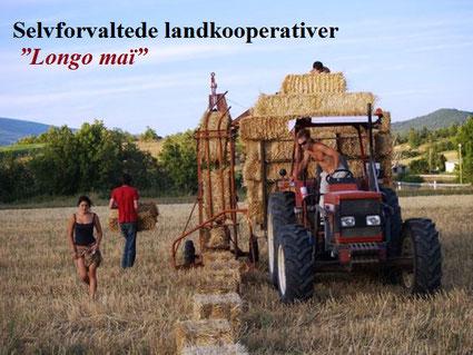 Longo maï -kollektivet i Schweiz  inviterer naboerne til sommerfesten