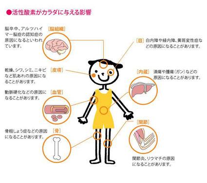 活性酸素が身体に与える影響