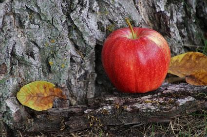 Apfel Fasten Entspannen Natur