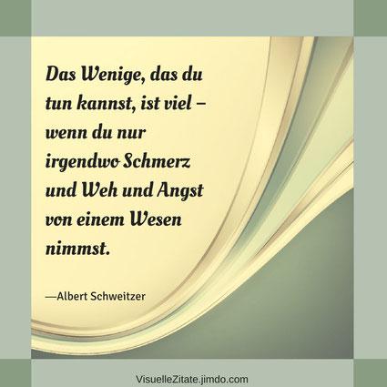 Das Wenige das du tun kannst ist viel wenn du nur irgendwo Schmerz und Weh und Angst von einem Wesen nimmst Albert Schweitzer visuelle zitate